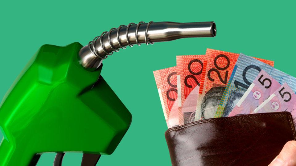 植物油燃料多少钱一吨?