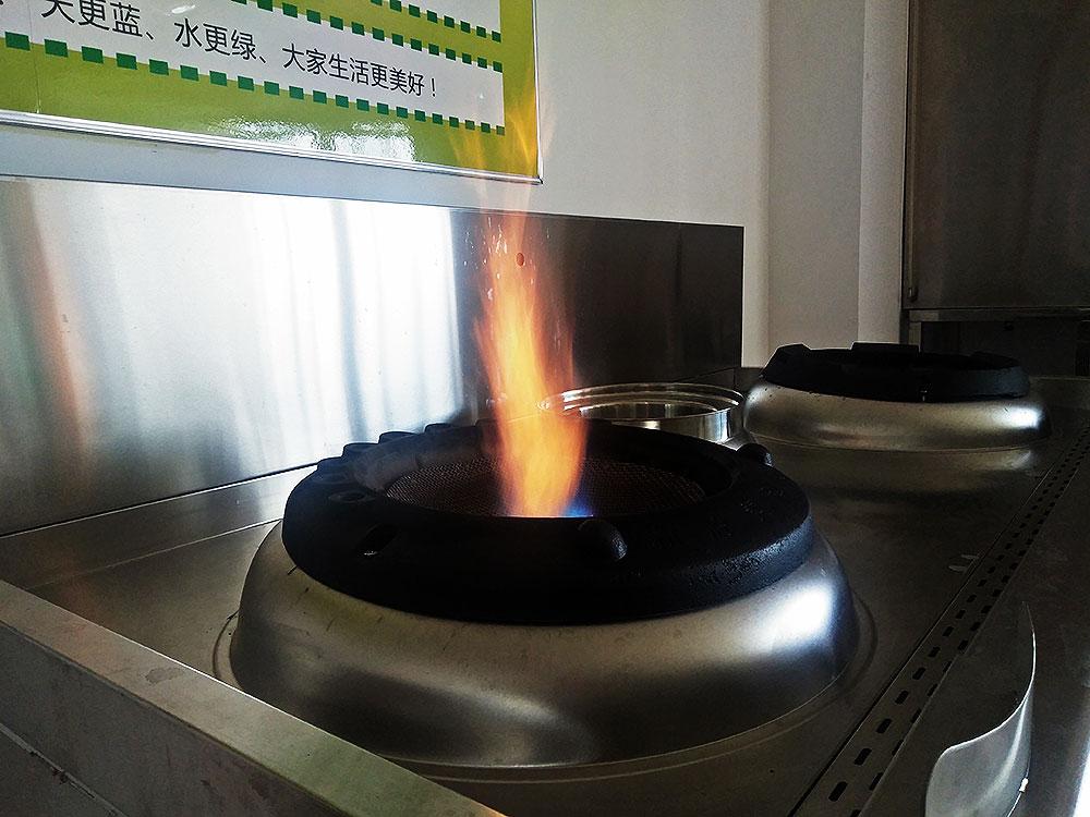 植物油燃料的优势及应用领域
