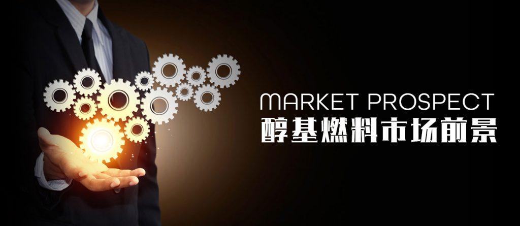 醇基燃料市场分析与投资前景